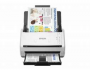 Epson DS-530 Driver Software